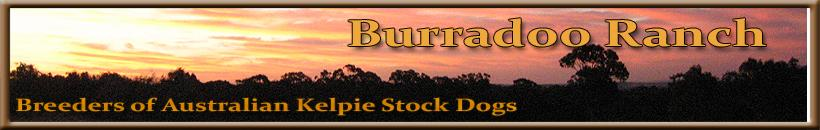 Burradoo Ranch