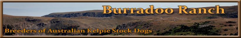 Burradoo Ranch