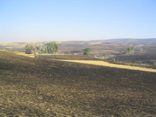 derbyfire